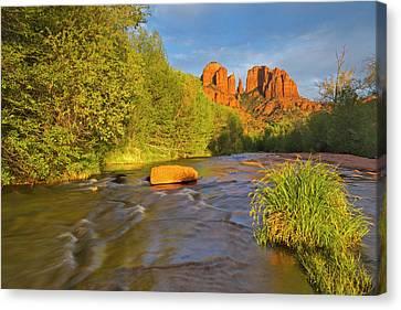 Oak Creek Canvas Print - Cathedral Rocks Reflect Into Oak Creek by Chuck Haney