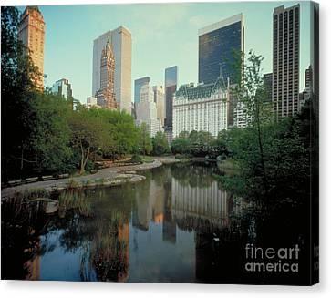 Central Park Canvas Print by Rafael Macia