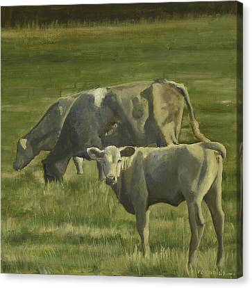 Canvas Print featuring the painting 3 Cows In The Pasture by John Reynolds