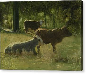 Canvas Print featuring the painting Cows In The Sun by John Reynolds