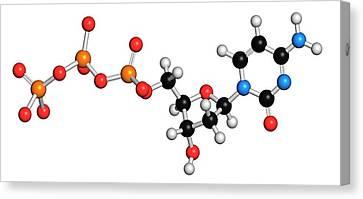 Deoxycytidine Triphosphate Molecule Canvas Print by Molekuul