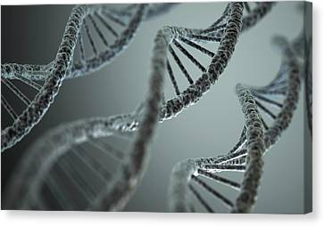 Dna Double Helix Canvas Print by Ktsdesign