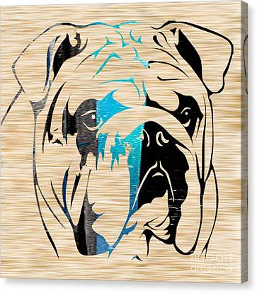 Bulls Canvas Print - English Bulldog by Marvin Blaine
