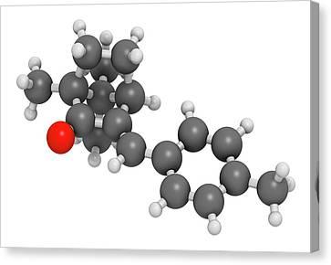 Enzacamene Sunscreen Molecule Canvas Print by Molekuul
