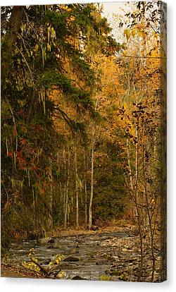 Fall At Sheep Creek Canvas Print