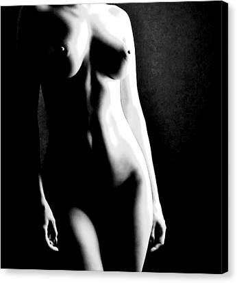 Female Form And Light Canvas Print by James Harper