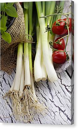 Npetolas Canvas Print - Fresh Ingredients by Mythja  Photography