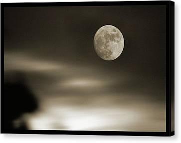 Full Moon Rising Canvas Print by Detlev Van Ravenswaay