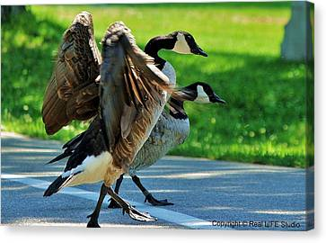 Geese Crossing Canvas Print by Al Fritz