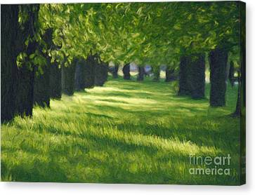 Green Lane In The Park Canvas Print by Aleksey Tugolukov