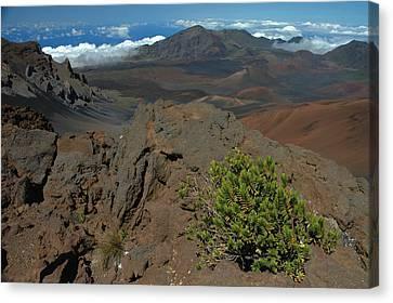 Haleakala Afternoon Canvas Print by Stephen  Vecchiotti