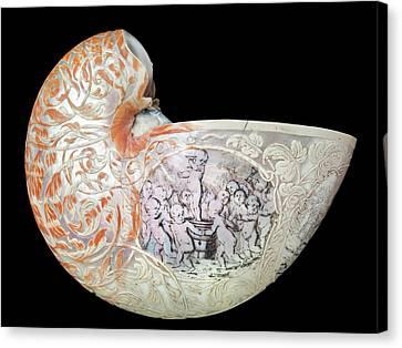 Invertebrate Canvas Print - Hans Sloane's Nautilus Shell by Natural History Museum, London