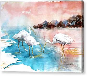 Ibis On The Beach Canvas Print by Joyce Allen