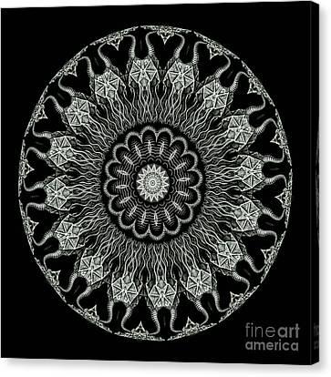 Kaleidoscope Ernst Haeckl Sea Life Series Black And White Set On Canvas Print
