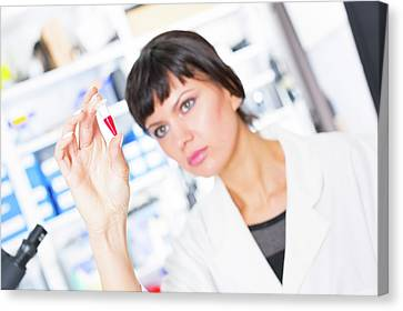 Lab Assistant Holding Test Tube Canvas Print