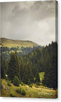 Landscape Canvas Print by Jelena Jovanovic