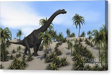 Large Brachiosaurus In A Tropical Canvas Print