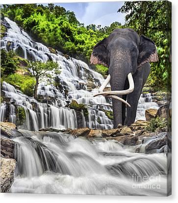 Mae Ya Waterfall Canvas Print by Anek Suwannaphoom