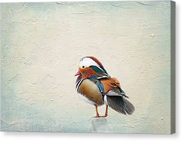 Animal Canvas Print - Mandarin Duck by Heike Hultsch