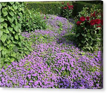 Monet's Garden In France Canvas Print