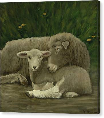 Mother And Lamb Canvas Print by John Reynolds