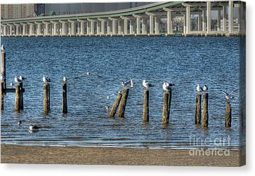 Ocean Springs To Biloxi Bridge Canvas Print by David Bearden