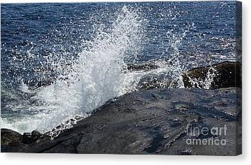 Ocean Waves Canvas Print by Rose Wang