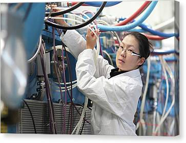 Optical Products Plant Canvas Print by Gombert, Sigrid