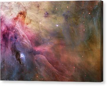 Orion Nebula Canvas Print by Sebastian Musial