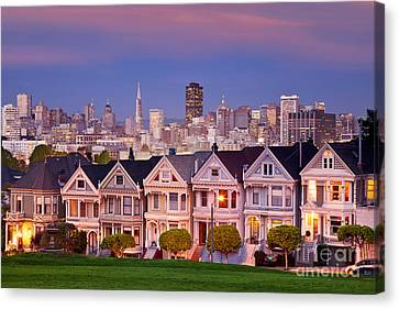 Painted Ladies Canvas Print by Brian Jannsen