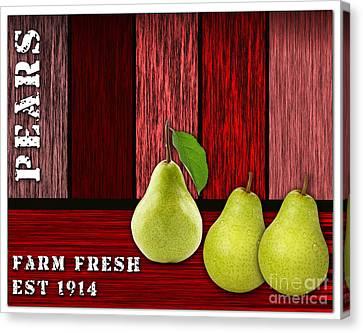Pears Canvas Print - Pear Farm by Marvin Blaine