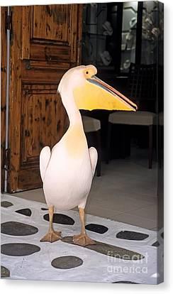 Pelican Canvas Print - Pelican In Mykonos Town by George Atsametakis