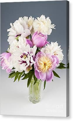 Peony Flower Bouquet Canvas Print