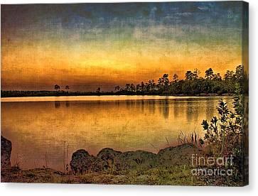 Pine Glades Lake Canvas Print by Anne Rodkin