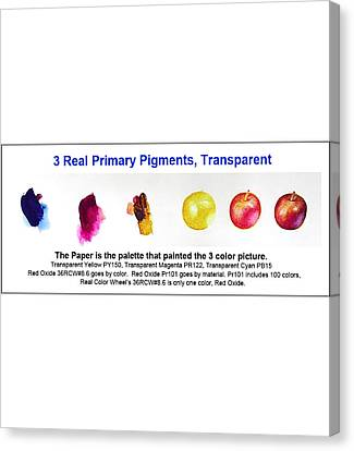 3 Primary Pigments - Apple Canvas Print by Don Jusko