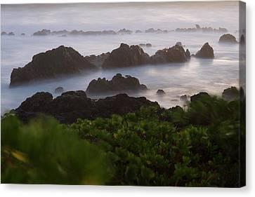 Reunion Island Canvas Print by Sergi Reboredo