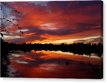 Canvas Print featuring the photograph Riparian Sunset by Tam Ryan