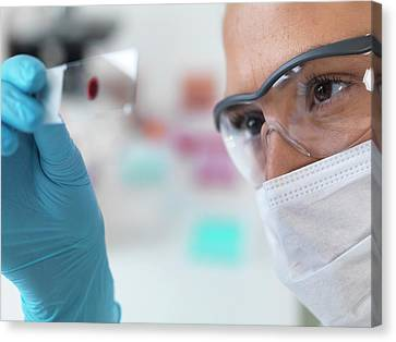 Scientist With Microscope Slide Canvas Print by Tek Image