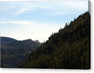 Seeley Lake In Montana Canvas Print by Larry Stolle