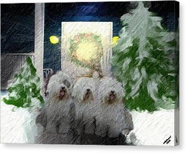 3 Sheepdogs Canvas Print