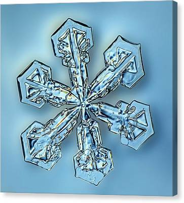 Snowflake Crystal Canvas Print by Gerd Guenther