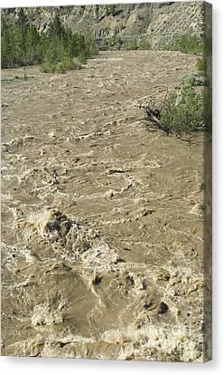 Spring Flood, Nicola River, Canada Canvas Print by Kaj R. Svensson