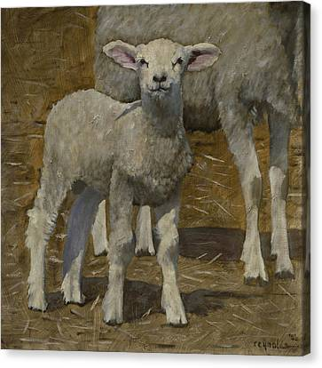Canvas Print featuring the painting Spring Lamb by John Reynolds