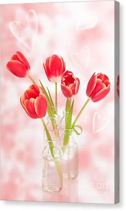 Spring Tulips Canvas Print by Amanda Elwell