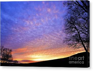 Sunrise Drama Canvas Print by Thomas R Fletcher