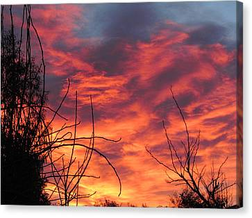 Sunset Skys Canvas Print by Joyce Woodhouse