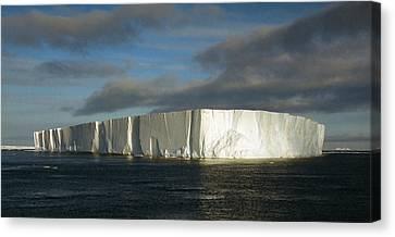 Tabular Iceberg Antarctica Canvas Print by Carole-Anne Fooks