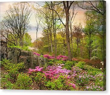 The Azalea Garden Canvas Print by Jessica Jenney