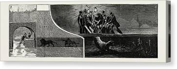 The Escape Of Lions From The Menagerie At Birmingham Canvas Print by Litz Collection