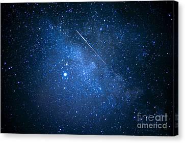 The Night Sky Canvas Print by Thomas R Fletcher